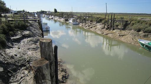 Cayenne canal en Marennes