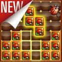 Woody Block Puzzle Jewel 2020 icon