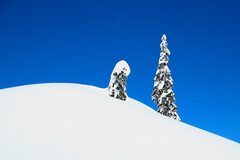 Minimal Winter Landscape di sauro_fiorani