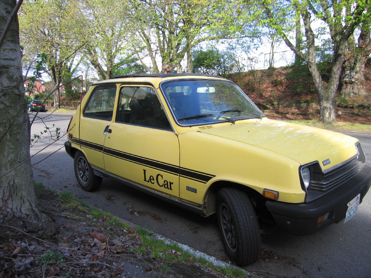 Renault5-Le_Car.jpg