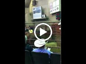 Video: Sand Mountain Stockyards, Alabama.  Cattle auction.