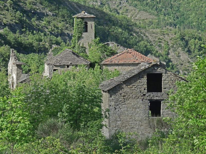 Castiglioncello di MauroV