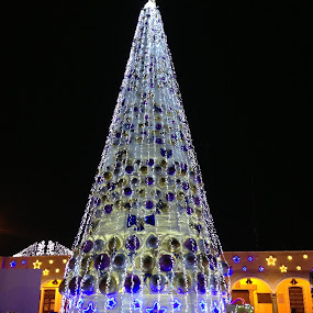 Christmas tree by Cristobal Garciaferro Rubio - Instagram & Mobile iPhone ( holiday, tree, christmas )