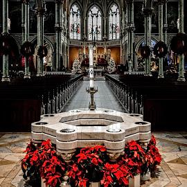 Baptismal by Richard Michael Lingo - Buildings & Architecture Places of Worship ( baptismal, church, savannah, worship, architecture )