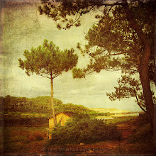 Photo: #landscape #textureblendphotography #vintagestyle  Have a great day!  Processed with my textures: http://wuestenhagen-imagery.photoshelter.com/gallery-collection/Texture-Packs/C0000KEq6byQIWcQ