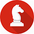 Playing Chess Guide Beginners