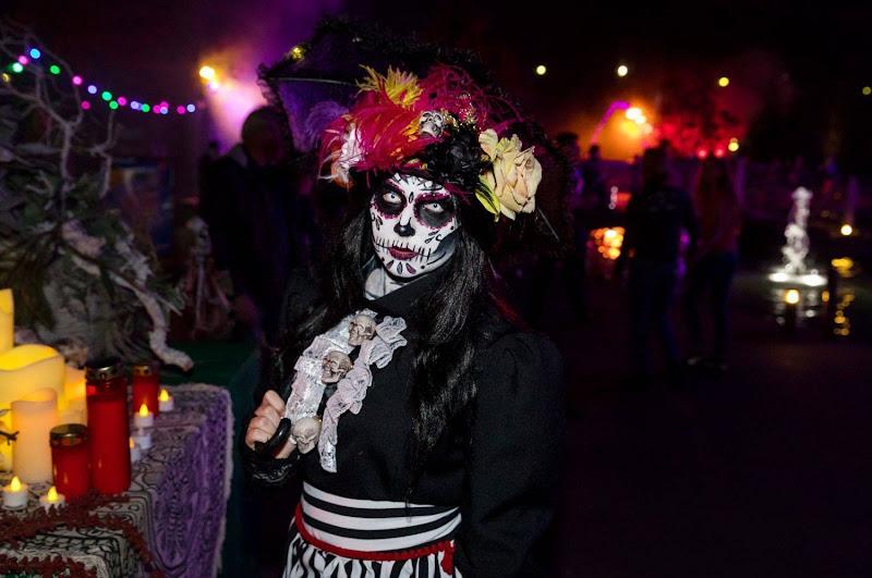 Spectaculaire vuurwerkshow tijdens de Halloween Nights in Toverland