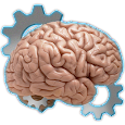 MRE Mind Trainer icon