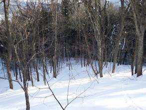 林道へ向う
