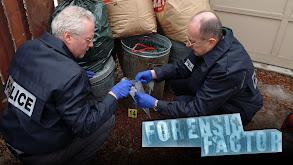 Forensic Factor thumbnail