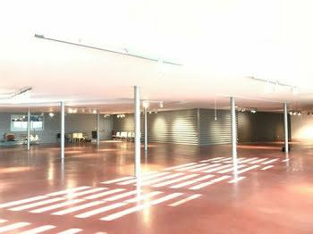 locaux professionels à Gallargues-le-Montueux (30)