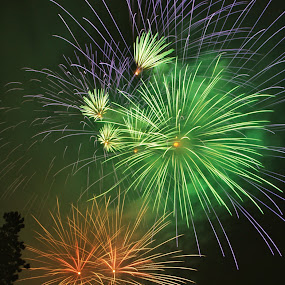 Firework Part 1 by Konstanze Singenberger - Public Holidays New Year's Eve ( color, firework, public holiday )