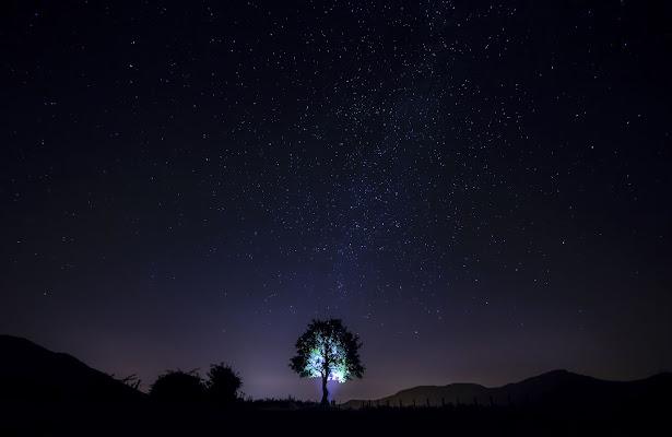La notte è magia. di Mony.M