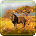 Lion Savanna Wild icon