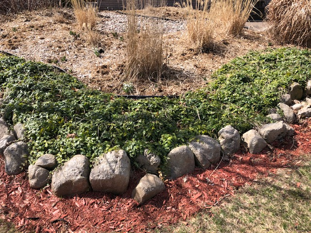 This is a photo of bushes and a rock garden.