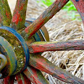 Wheel Spokes by Dave Feldkamp - Artistic Objects Other Objects ( wheel, wagon wheel, wagon,  )