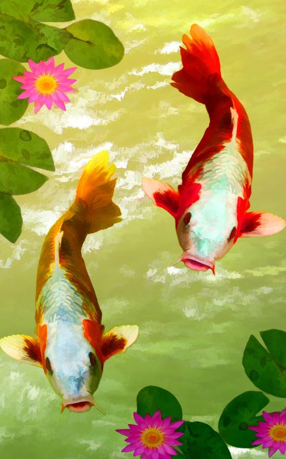 Koi Fish Live Wallpaper- screenshot