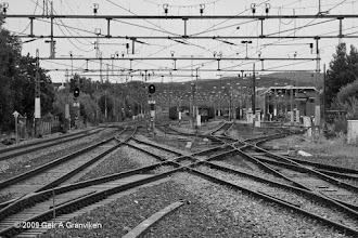 Photo: Tracks at Gulskogen, Drammen