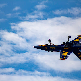 Blue Angel  by Rohan Jackson - Transportation Airplanes