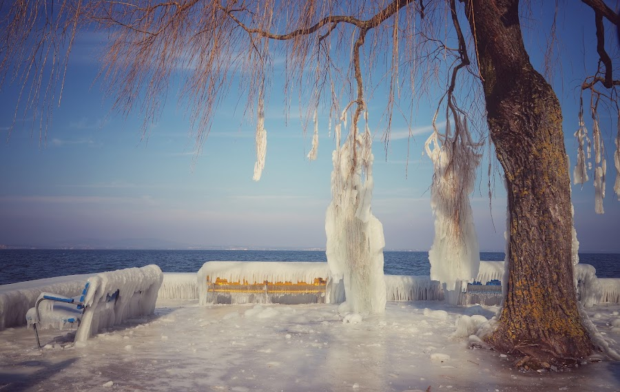 Ice Age I by Konstanze Singenberger - Nature Up Close Water ( water, icy, cold, ice, lake, frozen water, frozen )