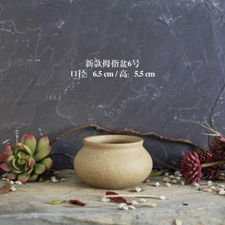 Miniature Ceramic Pot - 10 by AquaticsForevers Enterprise
