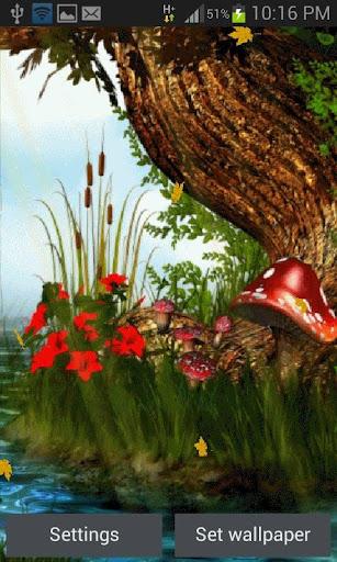 Nature Mushroom Live Wallpaper