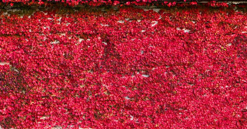 muro rosso di kareas