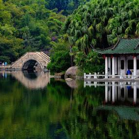 Bridge by Jaguar Ricko - Landscapes Waterscapes ( park )