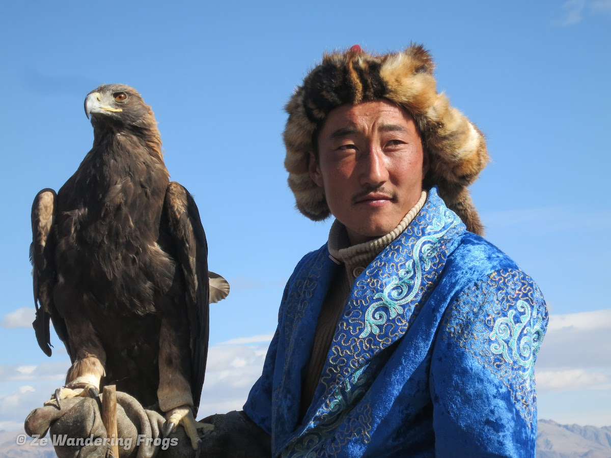 Mongolia. Golden Eagle Festival Olgii. Eagle eyes, Eagle Eyes
