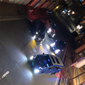 ヴェルファイア ANH20W のカスタム事例画像 青ヴェルさんの2020年04月08日23:02の投稿