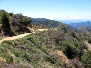 Photo: View west on the road at the point where the ridge route intersects it. A normal person would walk down the road to the trailhead. But I shall descend the firebreak in the next photo as a shortcut.