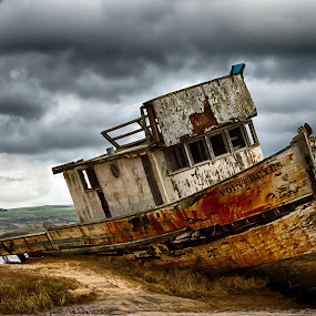 The Point Reyes by Craig Turner - Transportation Boats ( clouds, seals, winter, elephant seals, wreck, california, boats, boat wreck, pacific oecan, boat, pt reyes, coast )