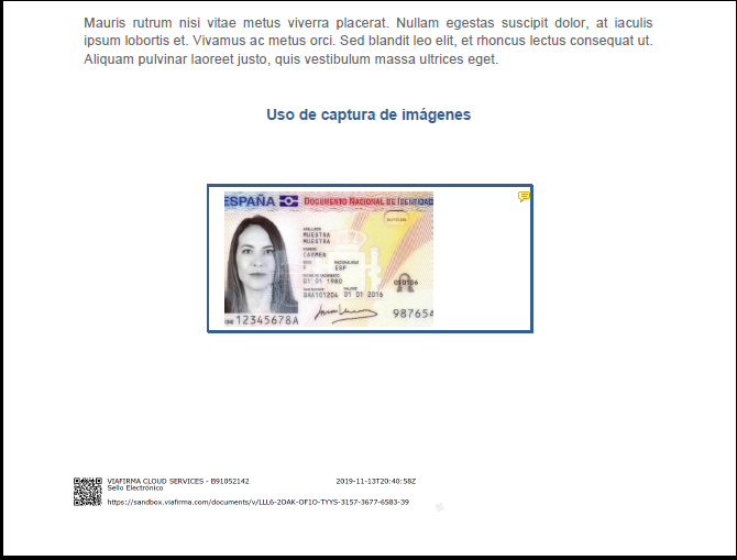 Imagen en documento firmado electrónicamente