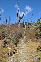 Photo: Dans la montée au Lasiya bhanjyang