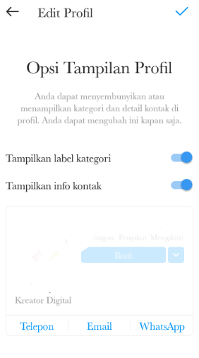 Tampilan Info Kontak pada Instagram IG