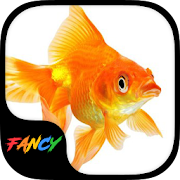 App Gold Fish Fancy Keyboard Theme apk for kindle fire