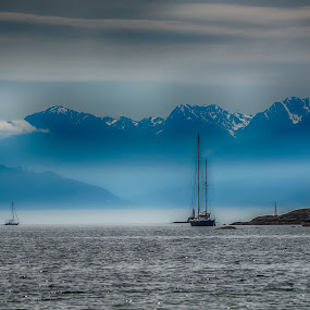 The Olympic mountains as seen from Gyro Park, Victoria BC by GThomas Muir - Landscapes Mountains & Hills ( mountains, victoria bc, olympic mountains, waterscape, ocean )