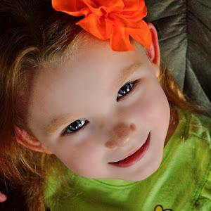 vay orange flower looking up color.jpg
