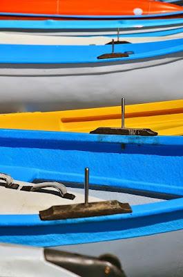 Barche di ely50