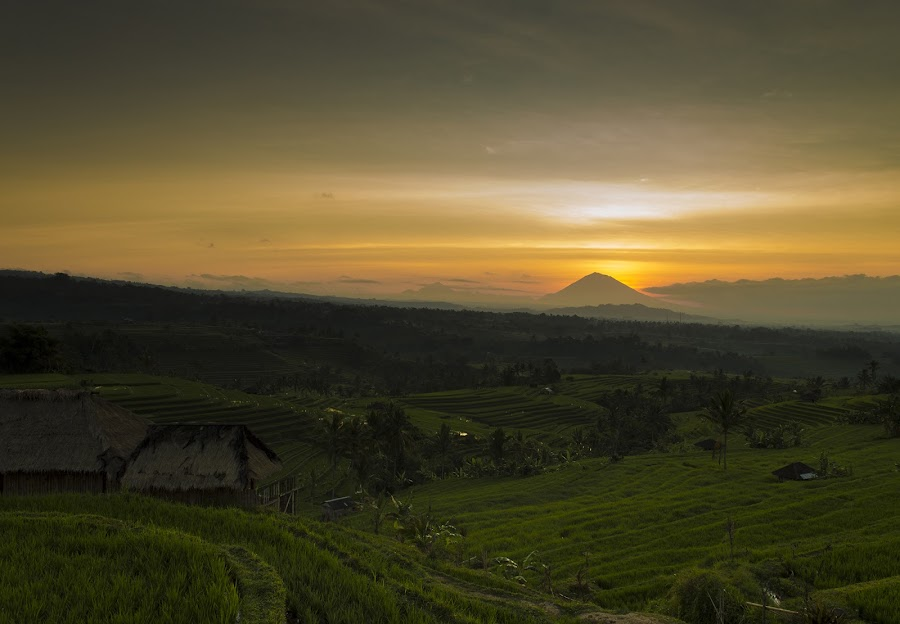 The First Light by Dee Cahyadi - Landscapes Mountains & Hills ( bali, mountain, sunrise, light, rice terrace )