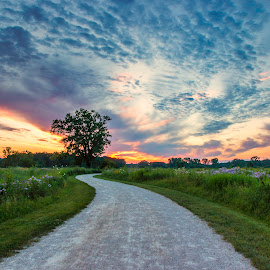 Colorful Sky Again by Sue Matsunaga - Landscapes Prairies, Meadows & Fields