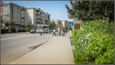 Photo: Cununița, Floara miresei (Spirea) - de pe Calea Victoriei - 2017.05.02