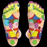 Foot Reflexology Chart 2.0