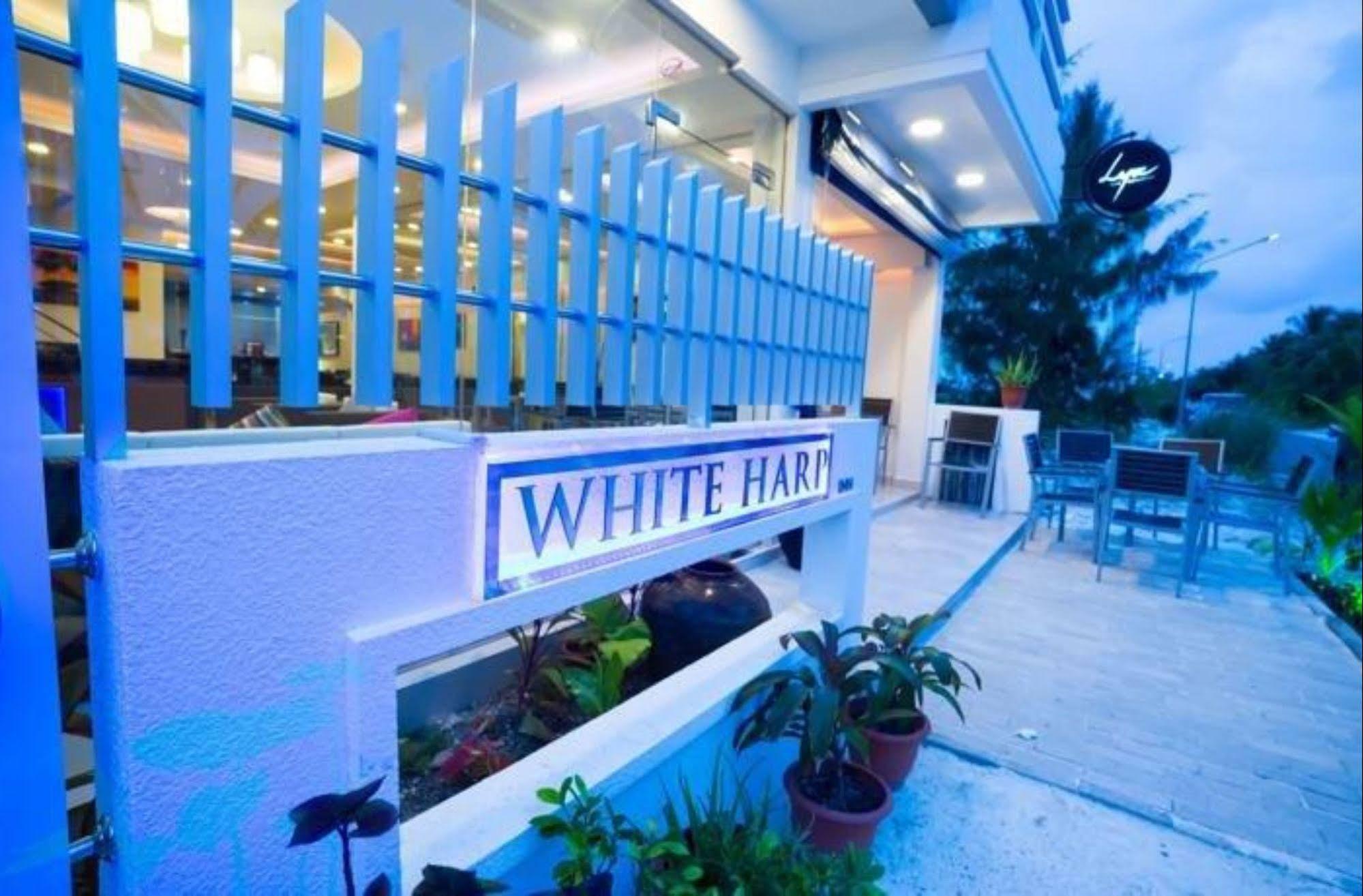 The White Harp Beach