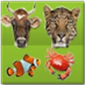 Animal Encyclopedia icon