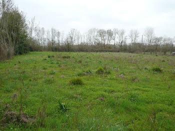 terrain à Puyrolland (17)