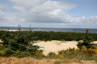 Photo: (Year 2) Day 353 -  View from Umpqua Lighthouse