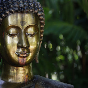 Contemplation by Aaron Gould - Artistic Objects Other Objects ( statue, peaceful, green, contemplation, meditation, buddha )
