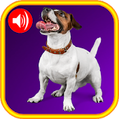 Funny Dog Sounds Free App
