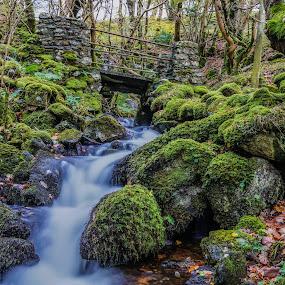 by Nigel Bishton - Landscapes Waterscapes
